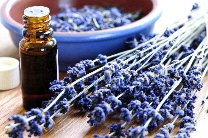 Fragrance Oils for Candles